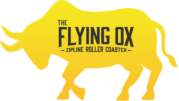 The Flying Ox Zipline Roller Coaster in Pigeon Forge